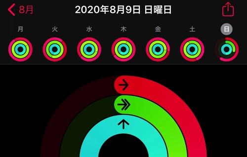 アクティビティ20200810