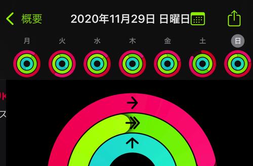 アクティビティ20201202